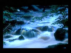 livingwater.jpg