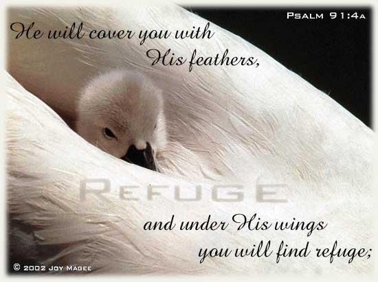 psalm91_41.jpg