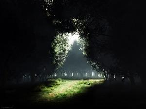 darkness_to_light_1600x12001